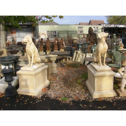 Pair of Stone Dogs in Plinths